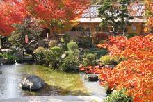 秋には紅葉が美しい紅葉亭の園内